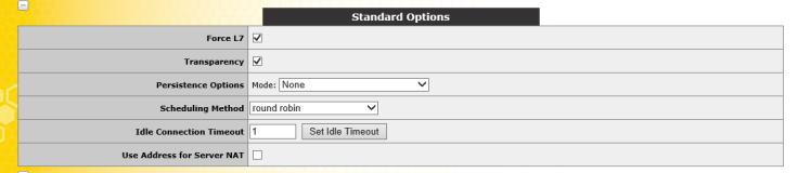 UDP Standard Options